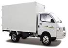 Box/Straight Truck